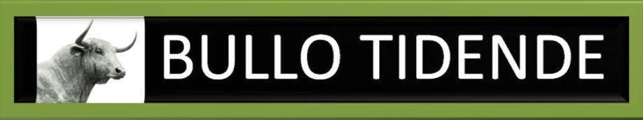 Bullo Tidende logo4