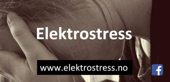 elektrostress logo