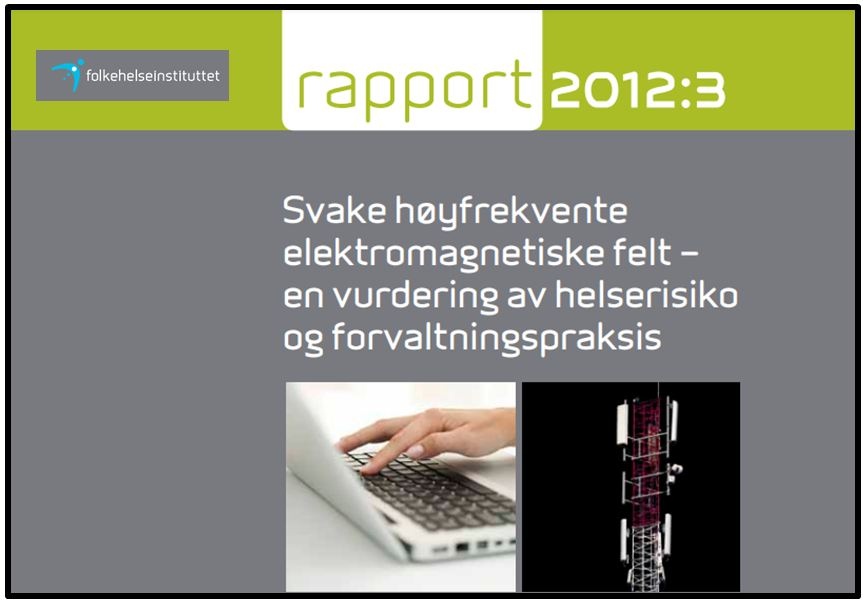 FHI rapport 2012